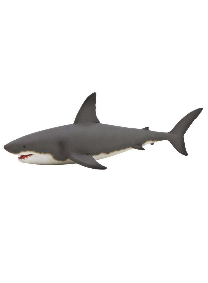 MOJO Bull Shark Large