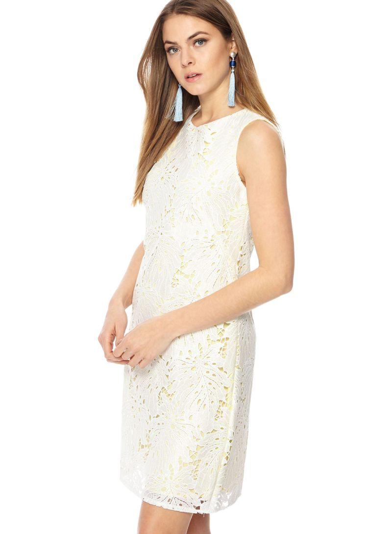 7d691a7e78e Shop Debenhams Principles Lace Round Neck Mini Shift Dress Light ...