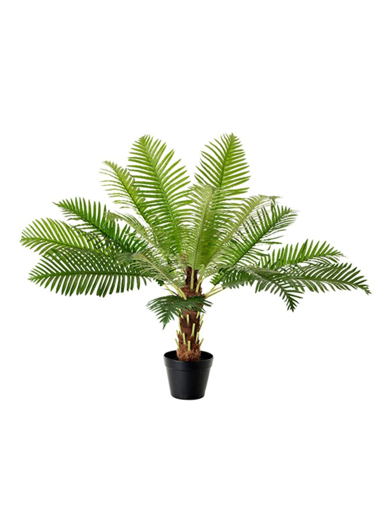 262 & Shop Ikea Fejka Artificial Fern Palm Plant With Pot Green ...