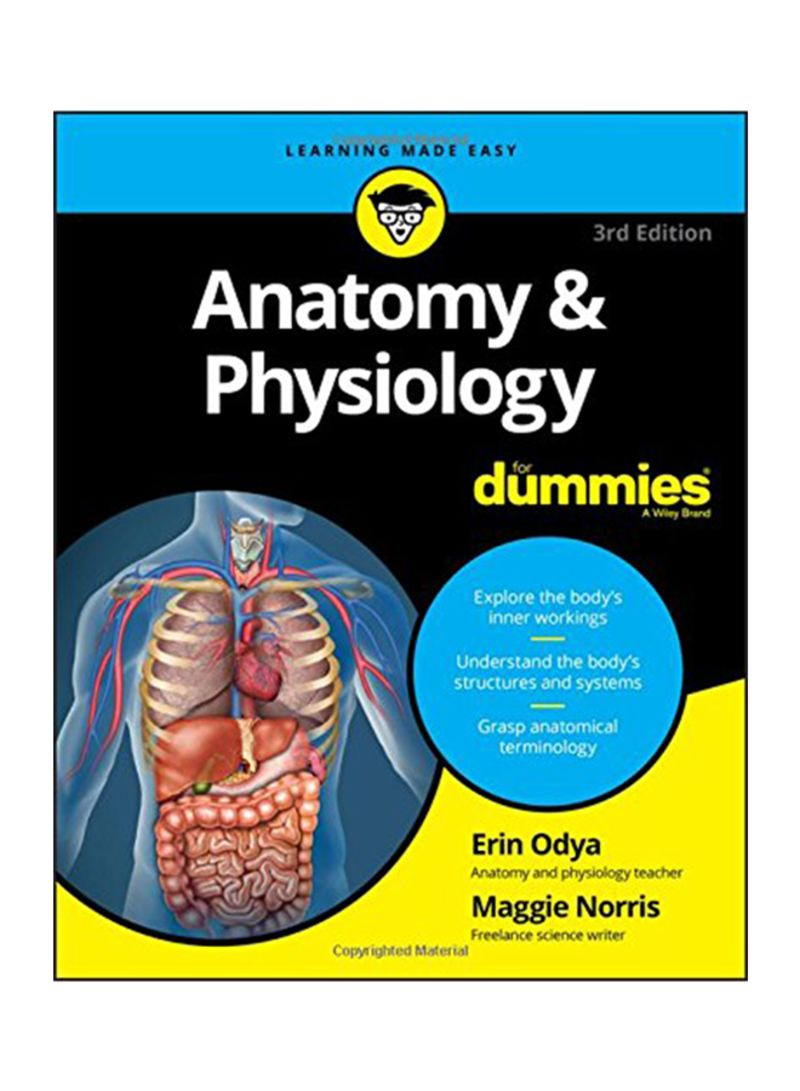 Shop Anatomy And Physiology For Dummies Paperback Online In Dubai