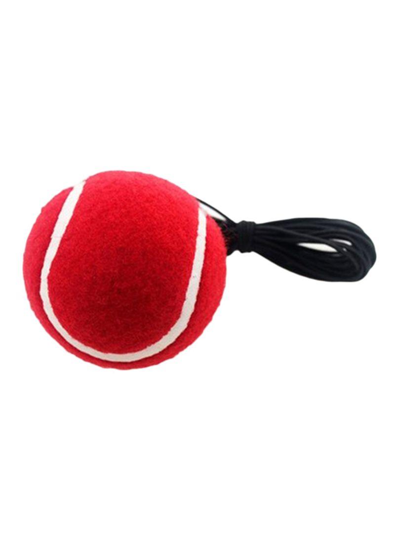 Boxing Reflex Fight Boxing Ball