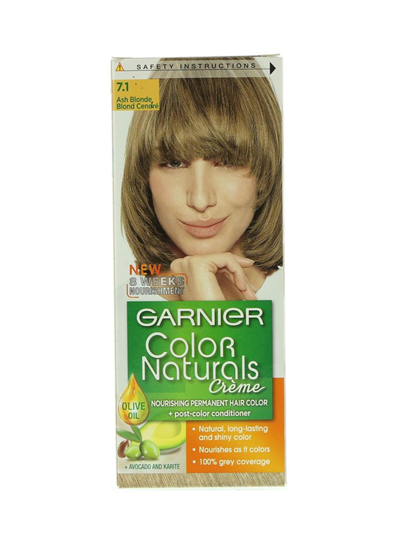 Shop Garnier Color Naturals Permament Hair Color Cream 71 Ash