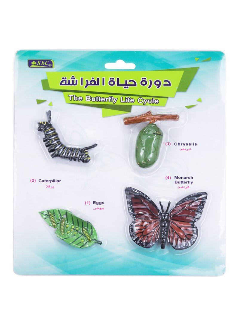 Shop Sbc 4 Pcs Educational Sbc 3d Models Butterfly Life Cycle