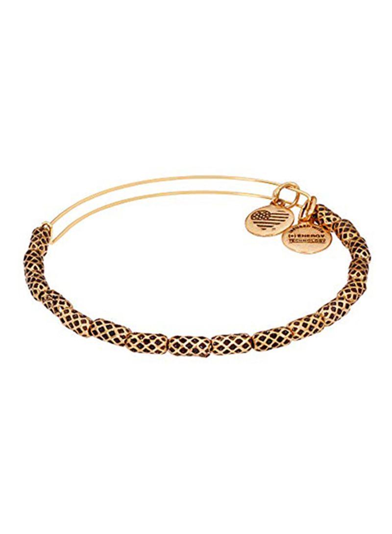 ii Rafaelian Gold Charm Bangle Authentic Alex and Ani Crab
