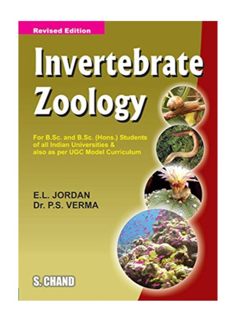 Shop Invertebrate Zoology - Revised Edition Paperback online in Dubai, Abu  Dhabi and all UAE