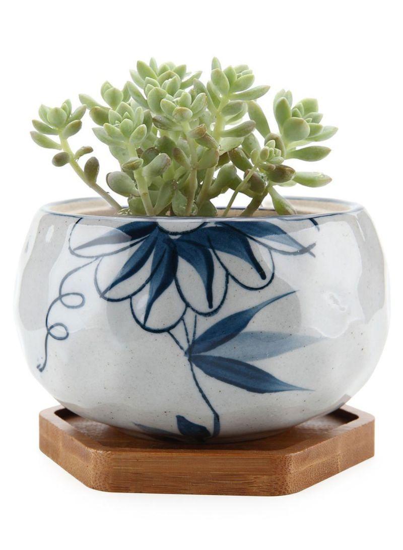 T4u Terracotta Chrysanthemum Flower Pot
