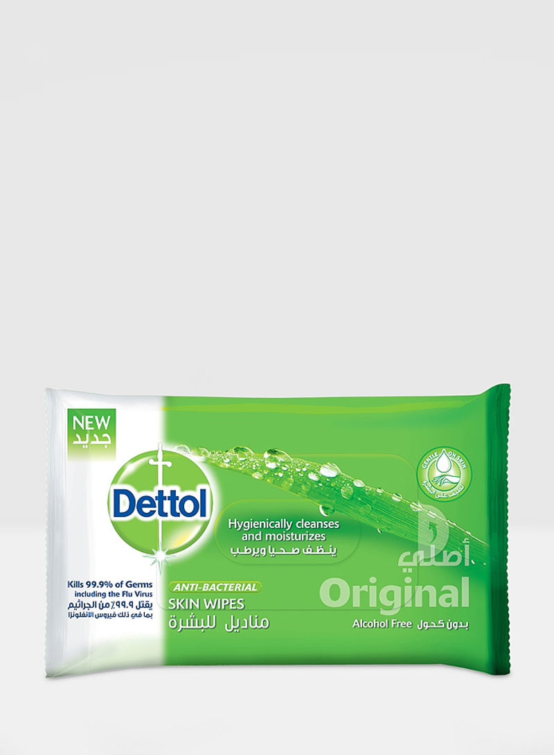 Original Anti-Bacterial Skin Wipes